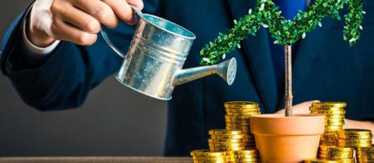 Meilleurs investissements financiers en France